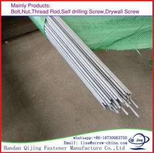 Full Thread Threaded Rod, DIN975/DIN 976, pictures & photos
