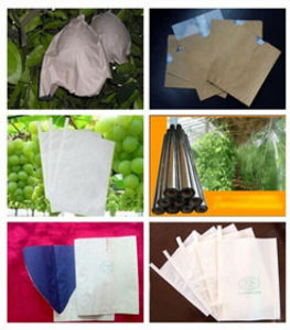 Durable Grape Growing Paper Bag Manufacturer pictures & photos