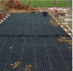 HDPE Geonet for Drainage pictures & photos