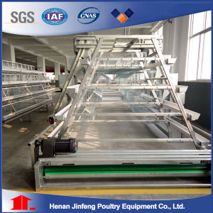Battery Layer Poultry Cages (BDT035-JF-35) pictures & photos