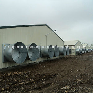 High Quality Prefab Steel Structure Poultry House for Sale pictures & photos