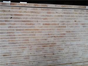 Poplar Core Blockboard in Okoume Veneer Bb/Cc Grade