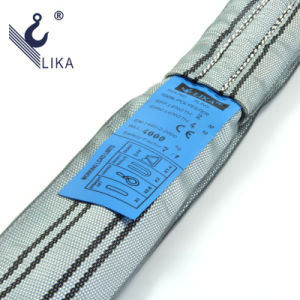 Ce GS Certificated 4t Polyester Endless Round Webbing Sling pictures & photos