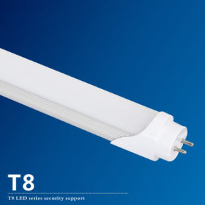 100lm/W T8 LED Tube for Office and Replacement
