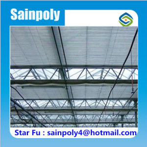 Good Daylighting Multi-Span Film Greenhouse pictures & photos