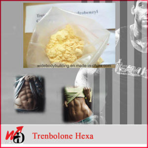 Muscle Growth Supplements Parabolan Powder Tren Hexahydrobenzylcarbonate pictures & photos
