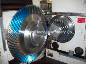 Pinion with Customer Designs pictures & photos