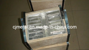 5n 6n 7n 8n High Purity Indium (In) Ingot