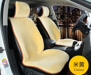 Professional Car Seat Covers & Car Seat Cushions pictures & photos