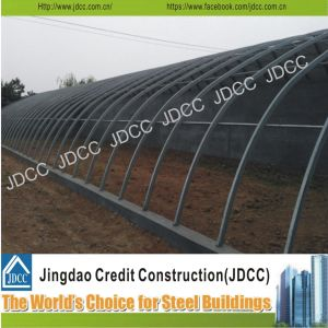 Structural Steel Fabrication Green House for Farm pictures & photos