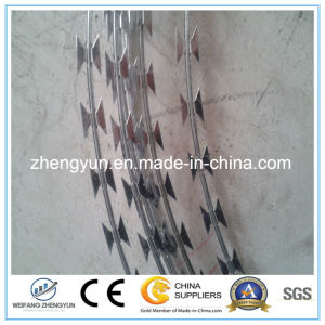Razor Blade Wires Galvanised Razor Barbed Wire pictures & photos