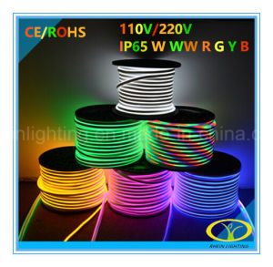Super Bright IP65 LED Neon Light with Ce RoHS Certification pictures & photos