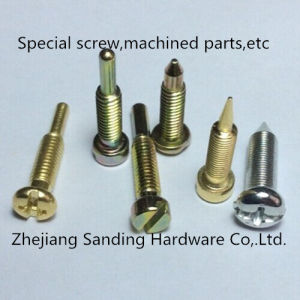 Special Screw, Steel Screw, Stainless Steel Screw pictures & photos
