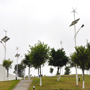 Wind Solar Energy Lamp, Wind Solar Energy Lamps (50W) pictures & photos