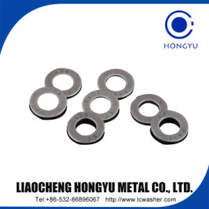 Washers, Coarse Type for Bolts DIN1441 pictures & photos