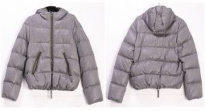 Windproof Men′s Duck Down Jacket (W22)
