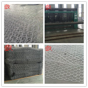 Anping Hexagonal Mesh Gabions Mesh Chicken Wire Mesh Philippines pictures & photos