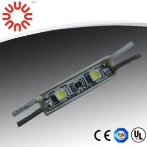 2LEDs/PC 12V Waterproof 3528 SMD LED Module pictures & photos