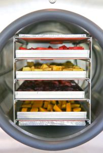 High Efficiency Food Freeze Dryer Price/Fruit Drying Machine pictures & photos