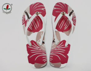 Elegant New Style Flip Flop for Ladies pictures & photos