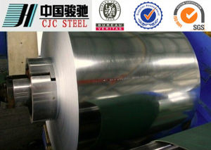 Zero Spangle Q195 En 10147 Hot DIP Galvanized Steel Coil