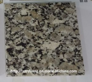 Polished Autumn Gold Granite Tiles for Paving, Wall, Flooring pictures & photos