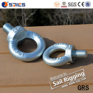 24mm Galvanized Drop Forged Lifting DIN580 Eye Bolt pictures & photos