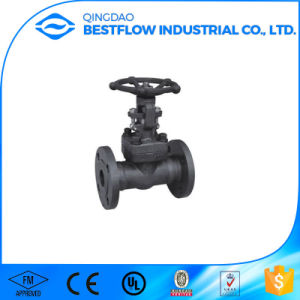 Forged Female Threaded and Socket Welded Gate Valve pictures & photos