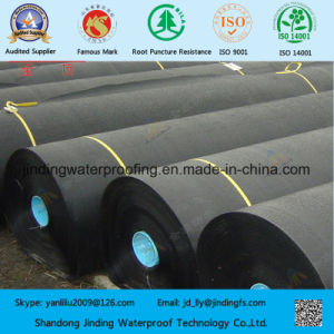 HDPE Geomembrane Liner in 2.0mm Thickness pictures & photos