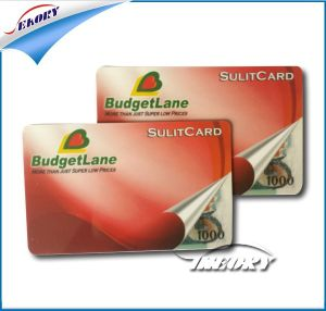 Lower Price Better Quality PVC Card/Plastic Card/ Business Card pictures & photos