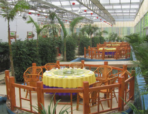 Cheapeat Quality Commercial Glass Greenhouse Used for Sale From China Supplier pictures & photos