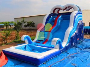 Undersea Printing Inflatable Water Slide for Sale Outdoor Inflatable Toys Slide Pool pictures & photos