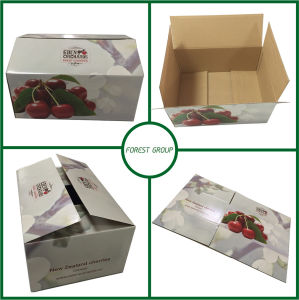 Corrugated Shipping Paper Packaging Box pictures & photos
