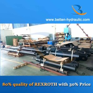 Same Quality with Rexroth/Parker Hydraulic Cylinders pictures & photos
