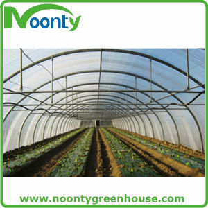 Custom Tunnel Frame Greenhouse/ Agricultural Greenhouse pictures & photos