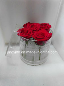 High Quality Acrylic Round Flower Box for Sale pictures & photos