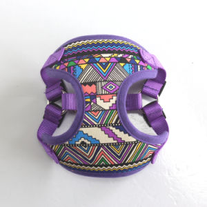 Neck Adjustable Soft Mesh Dog Harness No Pull Easy Walking Pet Puppy Vest Clothes (HY113) pictures & photos