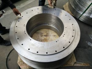 Big Diameter Flange for Tower pictures & photos