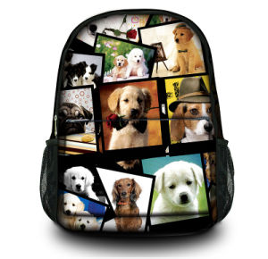 New Fashion Canvas Backpack Laptop Bags for Traveling School Hiking pictures & photos
