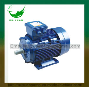 Y2 Series 0.75kw 6 Poles Aluminum Cast Three Phase Electric Motor pictures & photos