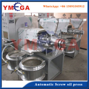 Automatic Combined Cold Screw Extraction Copra Coconut Oil Presser pictures & photos
