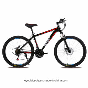 Cheap MTB Mountain Bike Supplier From China (ly-a-12) pictures & photos