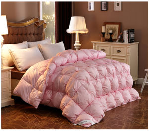 Eco Friendly Twin Quilt Cheap for Master Bedroom pictures & photos