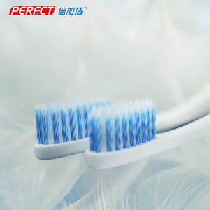 Spiral Tapered Double Sided Swan Toothbrush pictures & photos