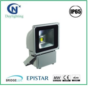 Energy-Saving 80W 100W Ce RoHS Approved LED Flood Light with Factory Price