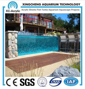 Customized Size Swimming Pool Used with Transparent Acrylic Sheet pictures & photos