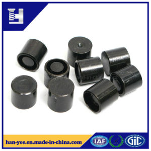 Real Factory Black Round Grooved Insert Fastener pictures & photos