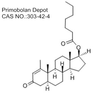 Primobolan Depot Female Anabolic Steroid for Bodybuilding pictures & photos
