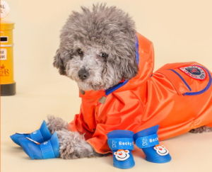Pet Fashion Fluorescent Rain Shoes Pet Waterproof shoes pictures & photos