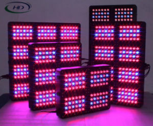 High Power 300W LED Grow Light (Neptune 6 series) pictures & photos